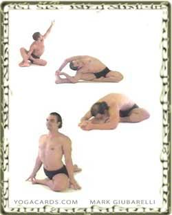 about vinyasa yoga