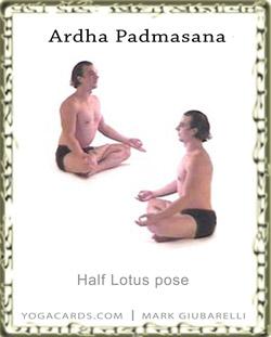 half lotus position