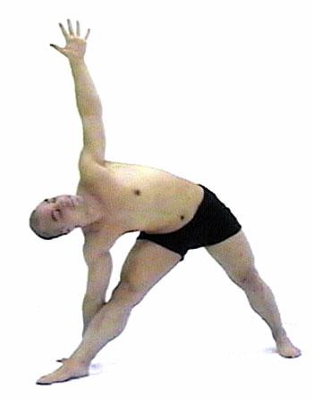 yoga pictures trikonasanatriangle poseyoga position