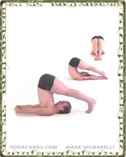 sanskrit skills posture quiz  yogacards