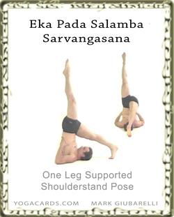 shoulderstand sarvangasana l