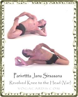 parivrtta janu sirsasana iv  yoga exercise