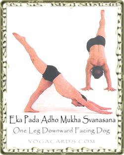 one leg downward dog pose