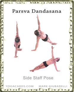 staff pose side parsva dandasana vasisthasana