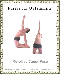 parivrtta ustrasana camel pose variation