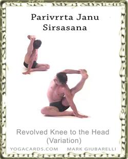 parivrtta janu sirsasana ii  yoga exercise