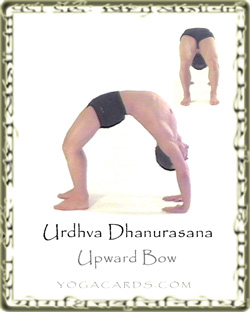 urdhva dhanurasana upward bow angle yoga tutorial