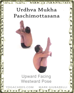 yoga posture urdhva dhanurasana upward bow