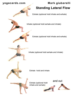 yoga fitness flows for health and well being see many